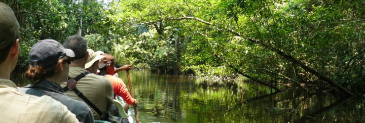 Urlaubsreise Ecuador - Paddeln im Amazonas