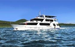 Galapagos Aggressor III - Tauchkreuzfahrt Galapagos