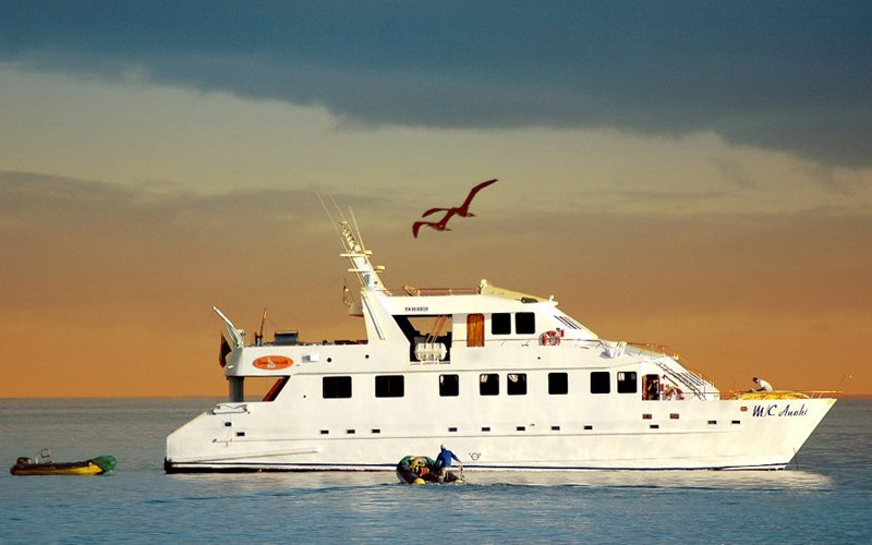 Anahi - Galapagos Luxus Kreuzfahrt