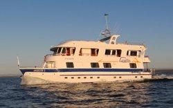 Angelito - Tourist Superior Galapagos Kreuzfahrt
