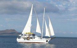Galapagos Segelyacht Cachalote I