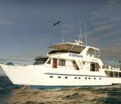 Galapagos Kreuzfahrt Yacht Floreana