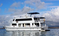 Fragata - Kreuzfahrt Galapagos