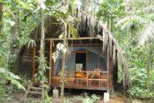 Huaorani Ecolodge - Cabaña