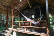 Huaorani Lodge - Cabaña