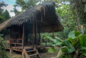 Huaorani Lodge