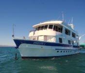 Galapagos Kreuzfahrt Yacht Angelito