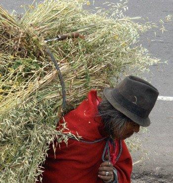Packliste Ecuador
