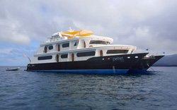 Petrel - Luxuskreuzfahrt Galapagos
