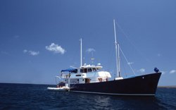 Samba - Segelyacht Galapagos
