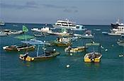 Santa Cruz - Galapagos Inseln