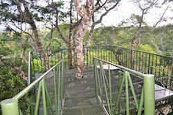 Canopy Turm Urwald Ecuador - Selva Lodge