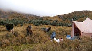 Ecuador Trekking Camp