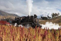 Ecuador Rundreisen - Bahnreise Ecuador mit dem Tren Crucero
