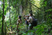 Huaorani Lodge - Urwaldwanderung