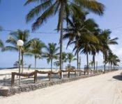 Walking Galapagos Reise - Insel Isabela Malecon