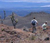 Walking Galapagos Reise - Insel Isabela im Hochland
