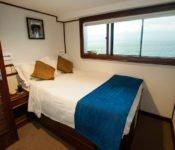 Galapagos Kreuzfahrt Yacht Letty - Doppelkabine