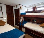 Galapagos Kreuzfahrt Yacht Letty - Dreierkabine
