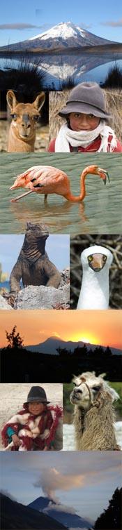 Ecuador Reisen und Galapagos Reisen & Patagonien Reisen
