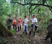 Cattleya Journey - Wanderung im Amazonas