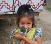 Cattleya Journey - Amazonas Bewohner
