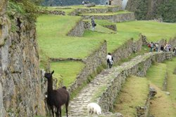 Heiliges Tal der Inkas - Peru Rundreise