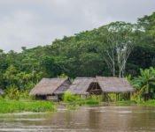 Cattleya Journey - Siedlung Amazonas