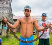 Cattleya Journey - Bewohner Amazonas