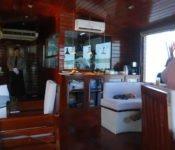 Cattleya Journey