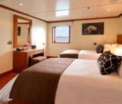Eclipse Galapagos Kreuzfahrtschiff - Zweibettkabine