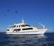 Galapagos Kreuzfahrt Yacht Galaven
