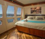Majestic Galapagos Kreuzfahrt Yacht - Doppelkabine