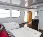 Galapagos Kreuzfahrt Katamaran Petrel - Zweibettkabine