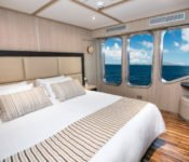 Galapagos Kreuzfahrtyacht Origin - Doppelkabine