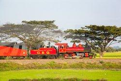 Tren Crucero mit restaurierter Dampflok