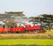 Tren Crucero - Zugreise durch Ecuador mit alter Dampflok