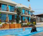 Hotel Sol y Mar - Santa Cruz