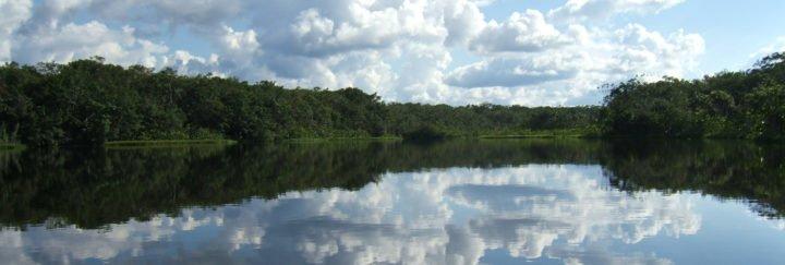 Amazonasabenteuer Ecuador