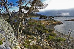 Australis Kreuzfahrten Patagonien - Wulaia Bucht