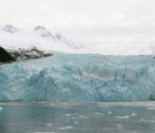 Australis Kreuzfahrten - Garibaldi Gletscher