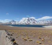 Altiplano Lagunen - San Pedro de Atacama