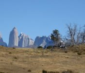 Torres del Paine Nationalpark