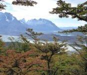 Torres del Paine - Ferrier Aussicht