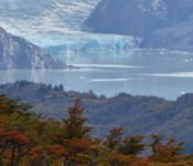 Torres del Paine - Grey Gletscher