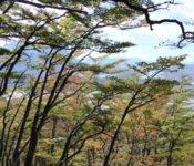 Torres del Paine - Ferrier Wanderung