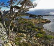 Australis Kreuzfahrten - Wulaia Bucht