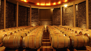 Bodega Matetic - Weinkeller mit Weinfässern, Chile