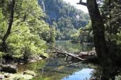 Trekking im Huerquehue Nationalpark