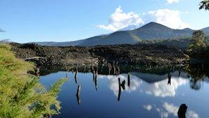 Conguillio Nationalpark Chile
